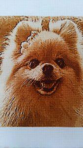 みのり工房,フォトクロスステッチ,クロスステッチ,無料,犬,イヌ,いぬ,写真から,クロスステッチ,作り方