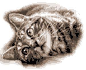みのり工房,フォトクロスステッチ,クロスステッチ,無料,猫,ねこ,ネコ,写真から,クロスステッチ,作り方