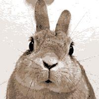クロスステッチ,フォトクロスステッチ,みのり工房,イヌ,犬,うさぎ,rabbit,クロスステッチ
